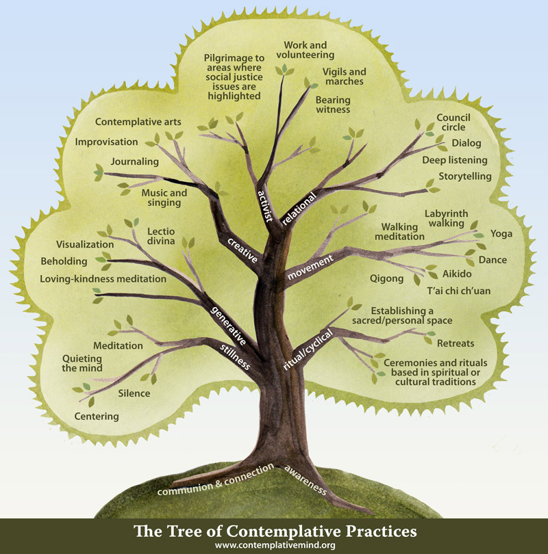 Tree of contemplative practices for Sean Crawley article